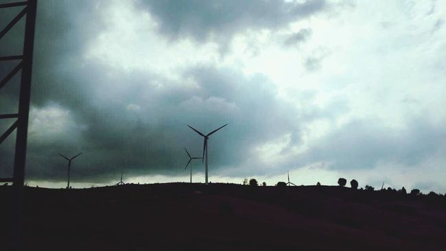 Wind Turbine Wind Power Environmental Conservation Alternative Energy Renewable Energy Windmill Rural Scene Nature Landscape Sky No People Outdoors Industrial Windmill Day Animal Themes Beauty In Nature Mammal