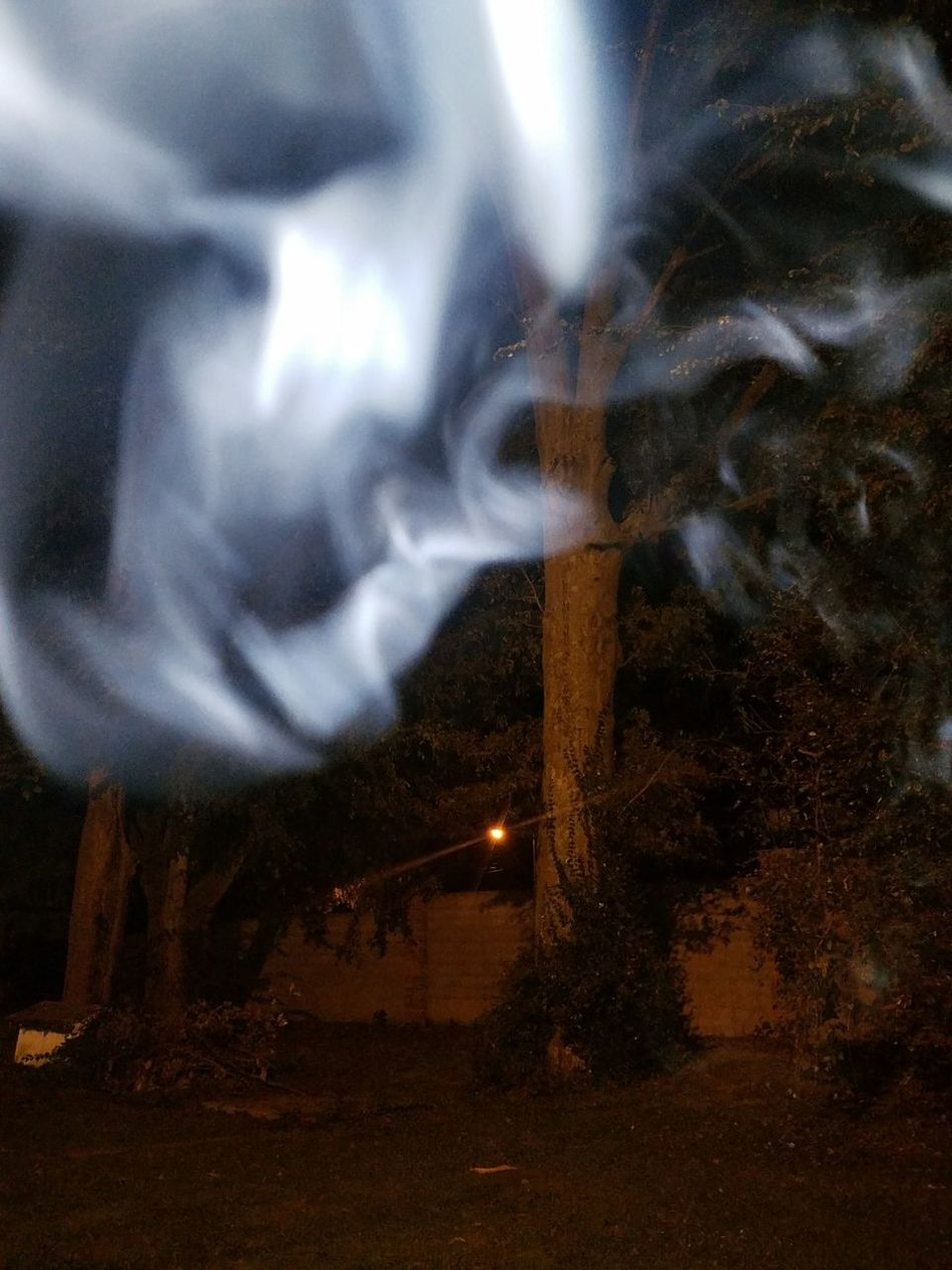 Smoke Spooky Feel Autumn Night Halloween Fall Grass Nature Outdoors No People Solitude Dark Trees