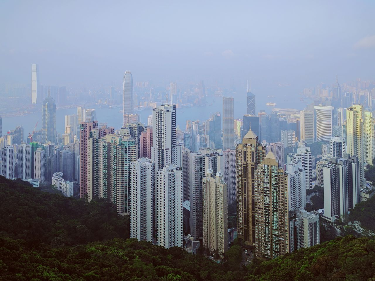 The peak Victoria Peak, Hongkong Cityscape Skyscraper City Urban Skyline Architecture Travel Destinations Building Exterior No People Modern Outdoors Business Finance And Industry Sky Day Futuristic Downtown District Concrete Jungle