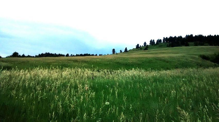 Hiking @ Boulder Colorado Taking Photos Enjoying Life Nature Travel Photography