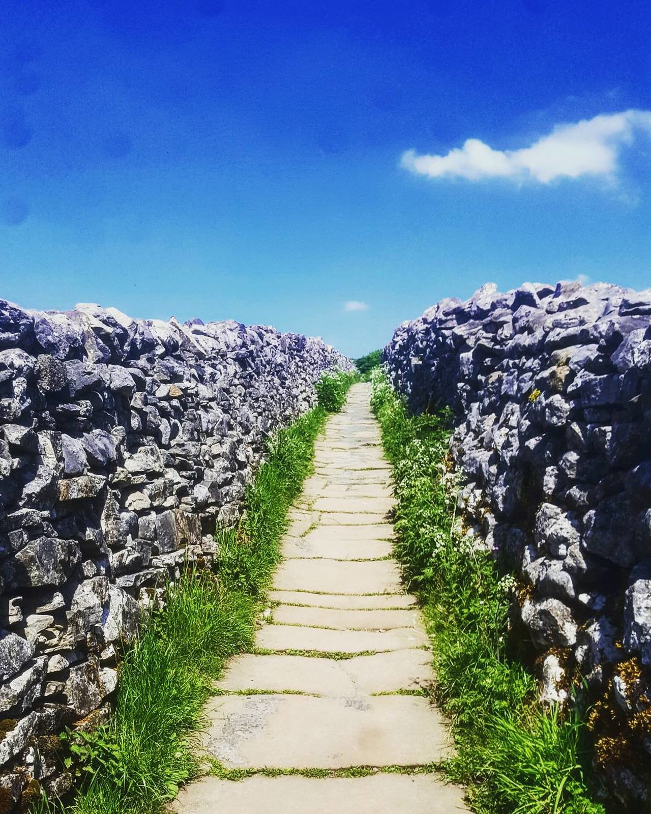 I will get to the top of my mountain. I will feel well. I will conquer it. This is my time. My space. My outdoors. My wellbeing. My summer. This is me. Yorkshire Beautiful Nature Outdoors Agriculture The Way Forward Sky Day Cloud - Sky No People Scenics Landscape Nature Beauty In Nature Yorkshire Dales Yorkshire Landscape The Dalesway Drystonewall Blue Sky Summer