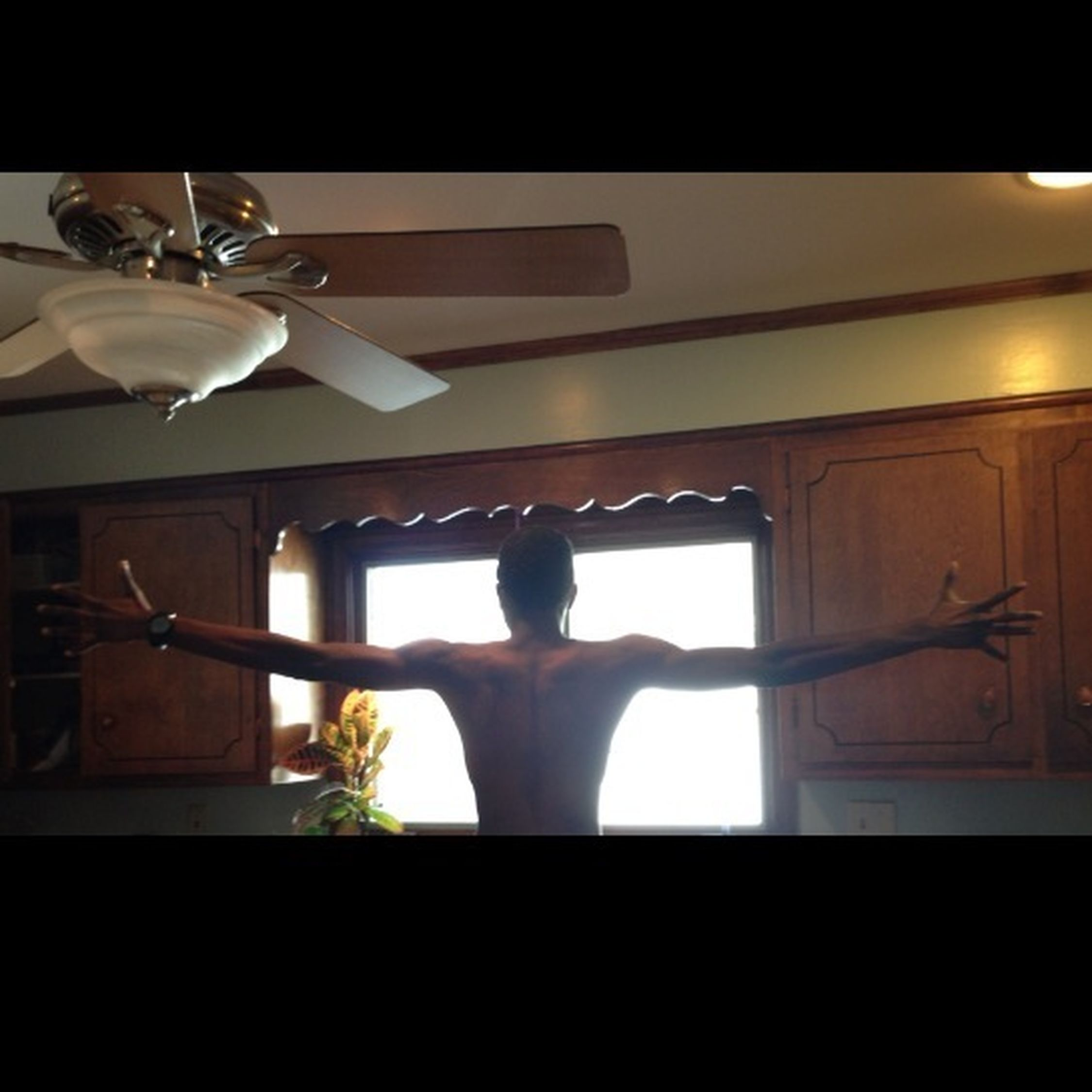 My Wingspan