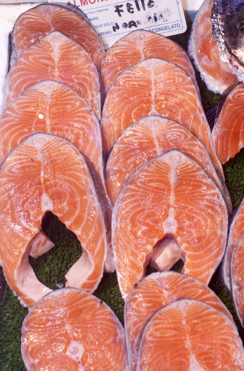 seafood, food, food and drink, freshness, healthy eating, raw food, orange color, fish, no people, for sale, retail, salmon, market, fish market, price tag, cold temperature, day, close-up, sashimi, indoors