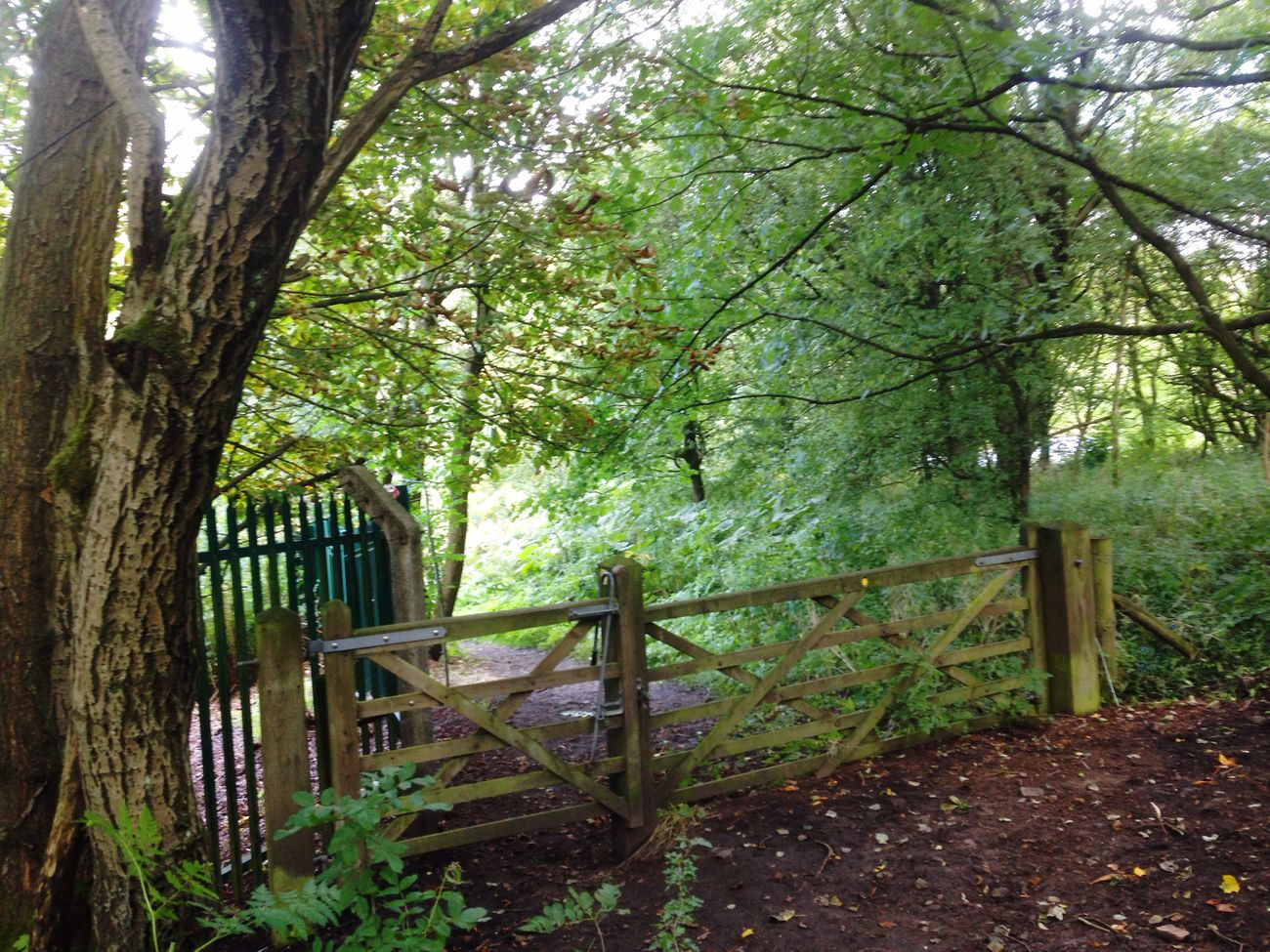 Nature On Your Doorstep Gateway to greenery