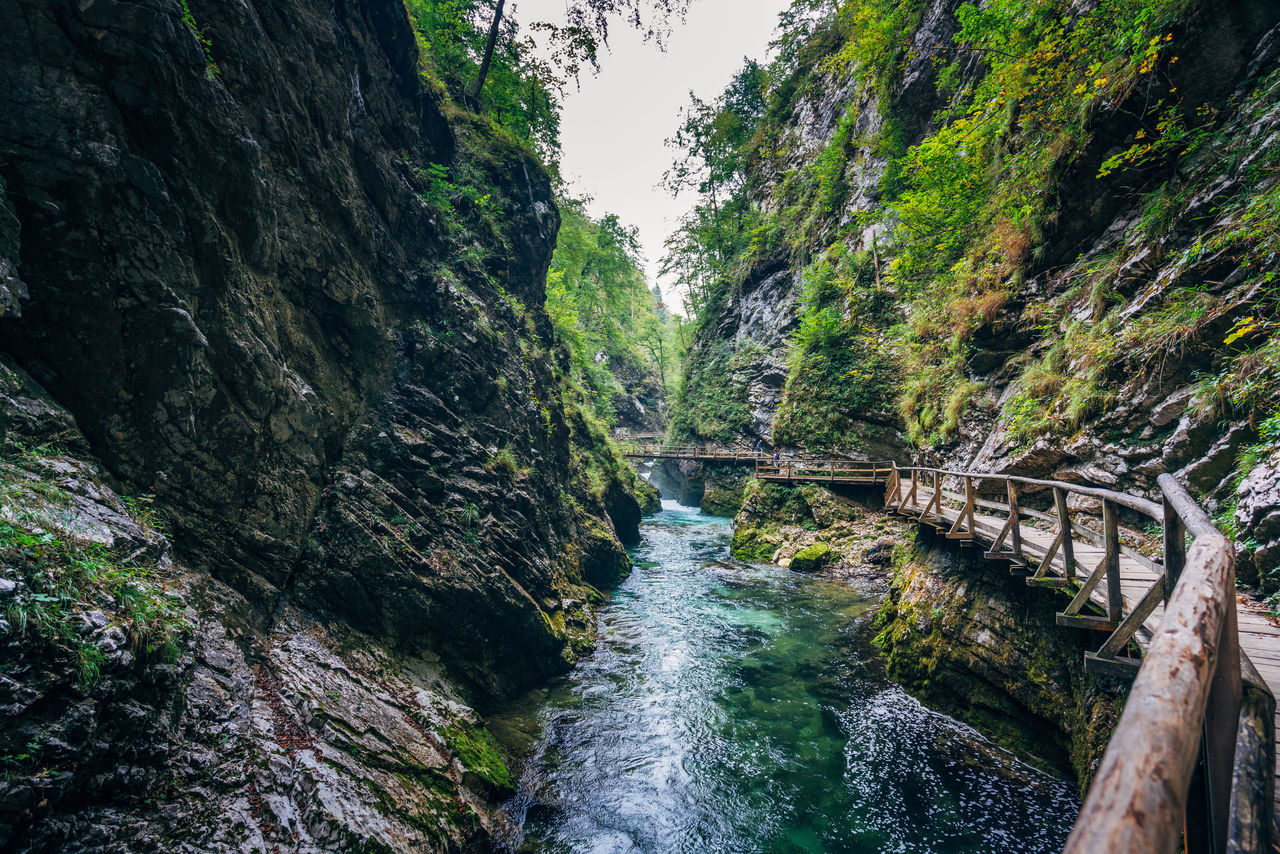 Beauty In Nature Canyon Day Forest Green Color Nature No People Outdoors Rapid Ravine River Rock - Object Scenics Tree Water Waterfall