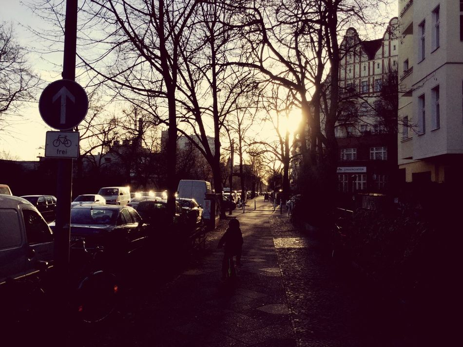 Car Transportation Street Berlin Fahrrad Bicycle Boy City Junge Tree Outdoors Road Sky Real People Sun Sunset