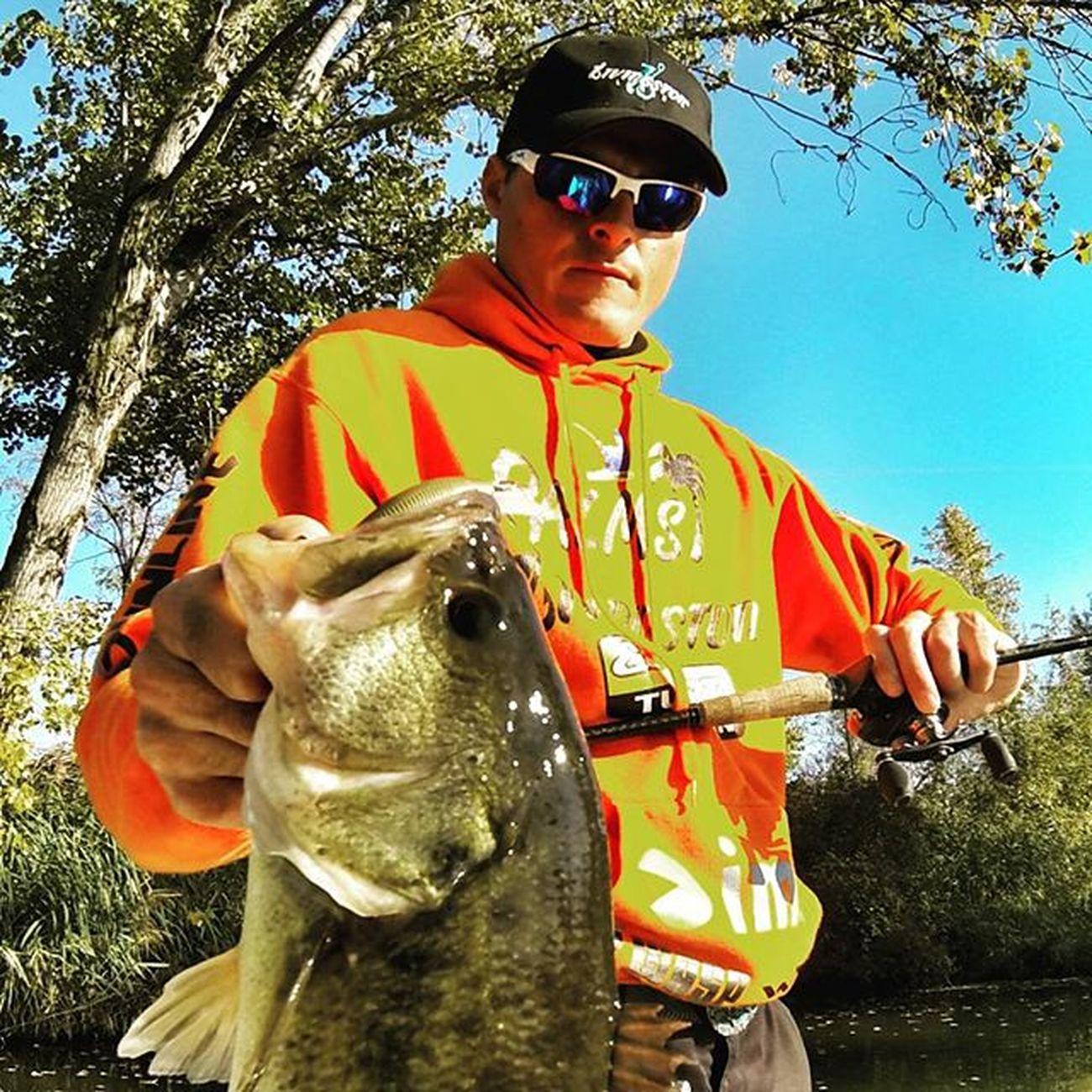 Still working with crankbait in this fall season! Crankbait Bass Teamlivingston Livingstonlures Livingstonluresfamily Livingstonluresprostaff Primetime Bassfishing Powerfishingcrank Wileyxglasses
