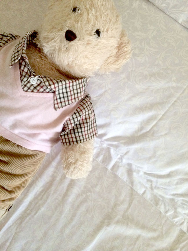 Bed Time Casual Clothing Close-up Comfort Comfortable Cute Cute Dolls Cute Teddy Doll Gift Leisure Activity Lifestyles Love Lovely Part Of Relaxation Teddy Teddy Bear Teddy Bears TEDDY LOVE Teddy<3 Teddybear TeddyBears Teddylove Teddys