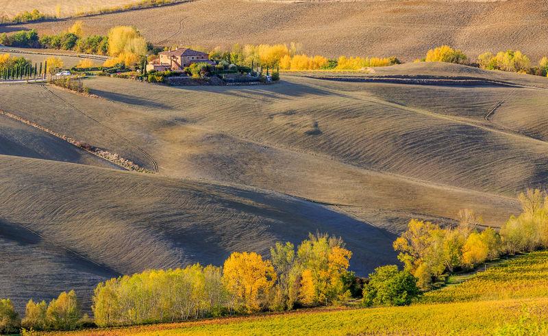 Bäume Farm Grass Italia, Bella Italia Italien Landschaft Toscana Toskana Tree Trees Bauernhof Baum Gelb Italy Toscany