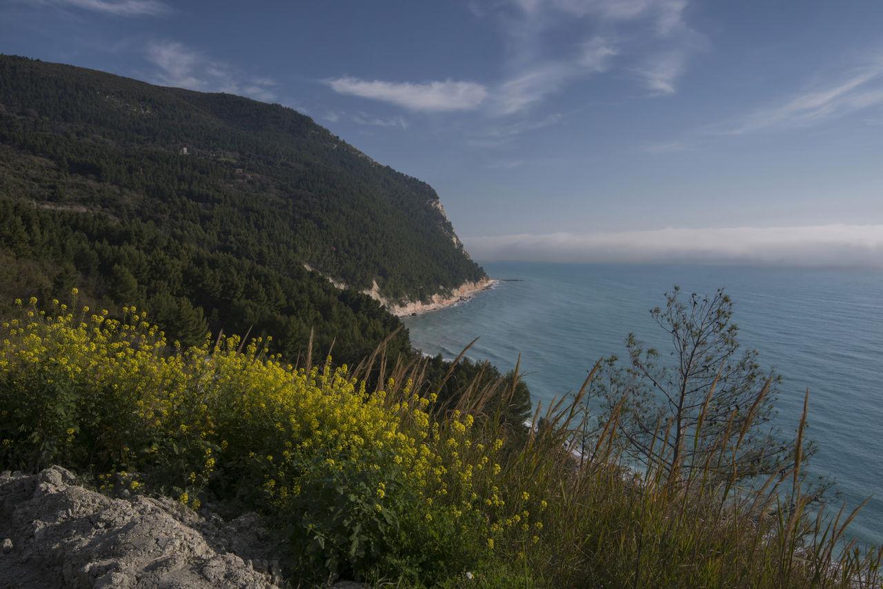 Beauty In Nature Coastline Conero Horizon Over Water Marche Monte Conero Mountain Nature Sea Sky Water