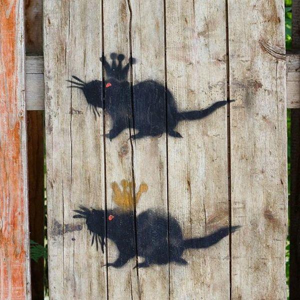 Art . The Ratking and RatQueen . Found in a Park near the Pfaffenstein Bridge . Regensburg Germany Deutschland . Taken by my Sonyalpha DSLR Dslt A57 . رسم  جرذ حديقة ريجنزبرغ المانيا