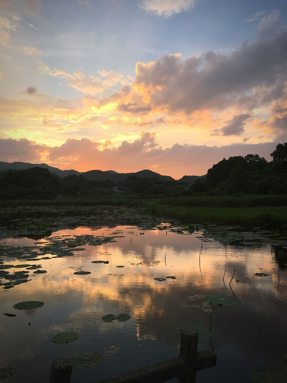 Water Sunset Reflection Tranquil Scene Lake Beauty In Nature Non-urban Scene Sky Nature Cloud Landscape Majestic IPhoneography IPhone Awajishima Hyogo 淡路島