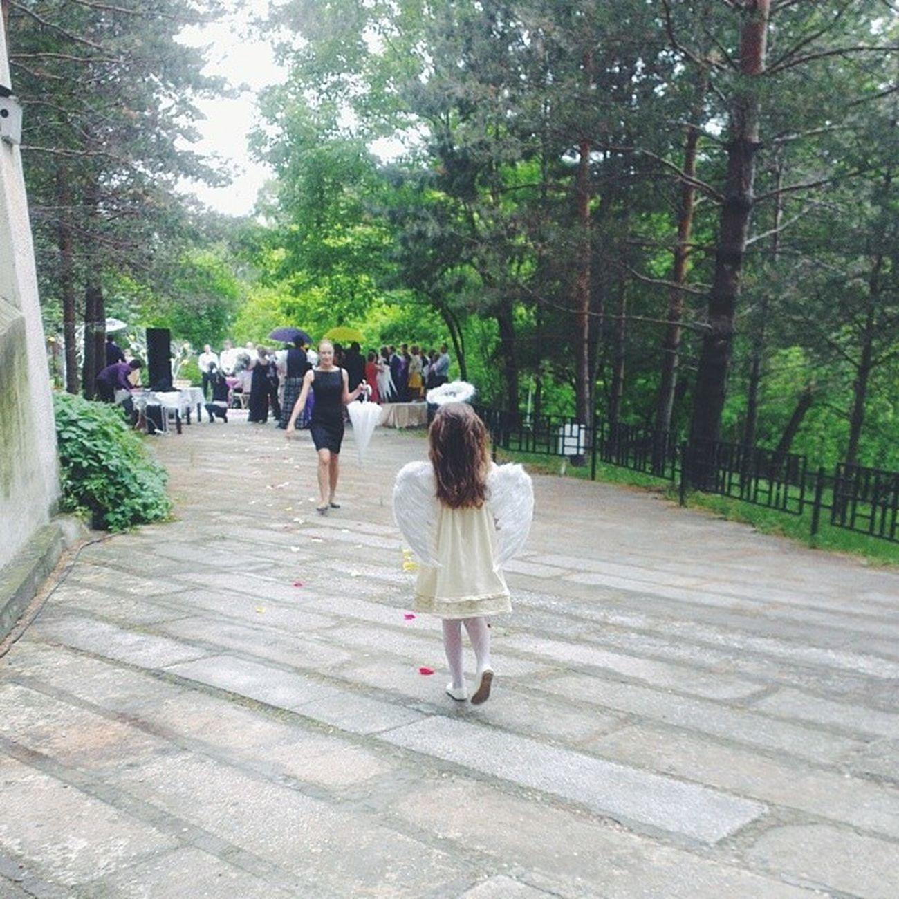 Выездная регистрация под зонтиками. Ангелок, несущий кольца, это так мило! Angel Wedding Vscocam