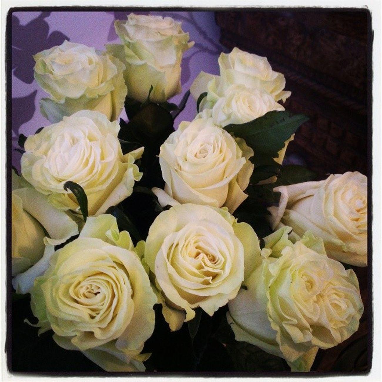 8марта цветы белыерозы поздравляю