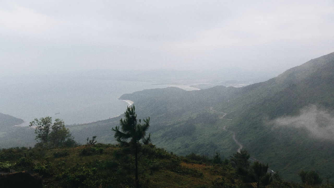 Beautiful stock photos of vietnam, tree, tranquil scene, scenics, mountain