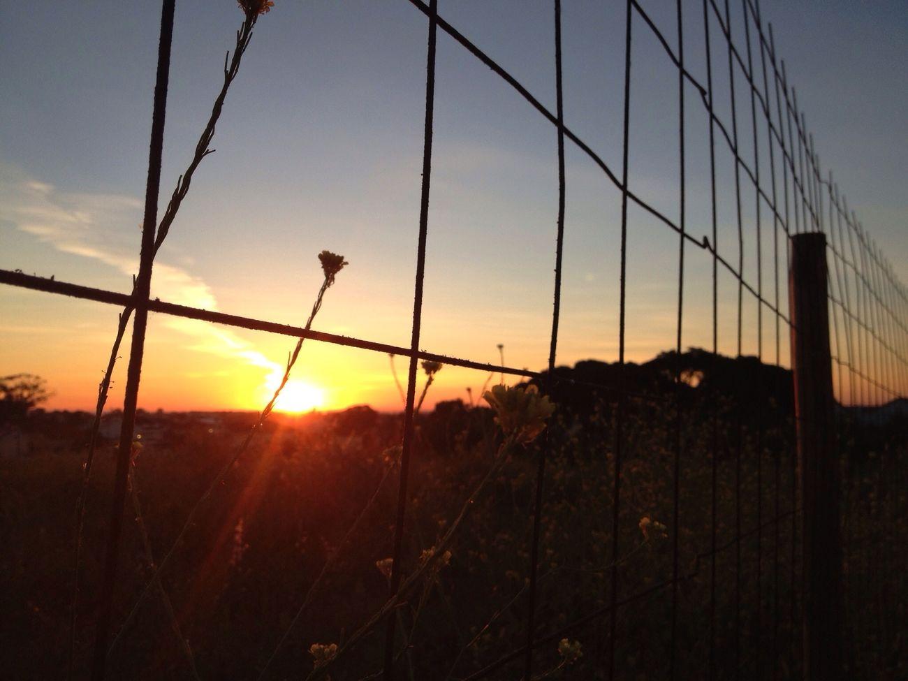 Sunrise Hello World Sun