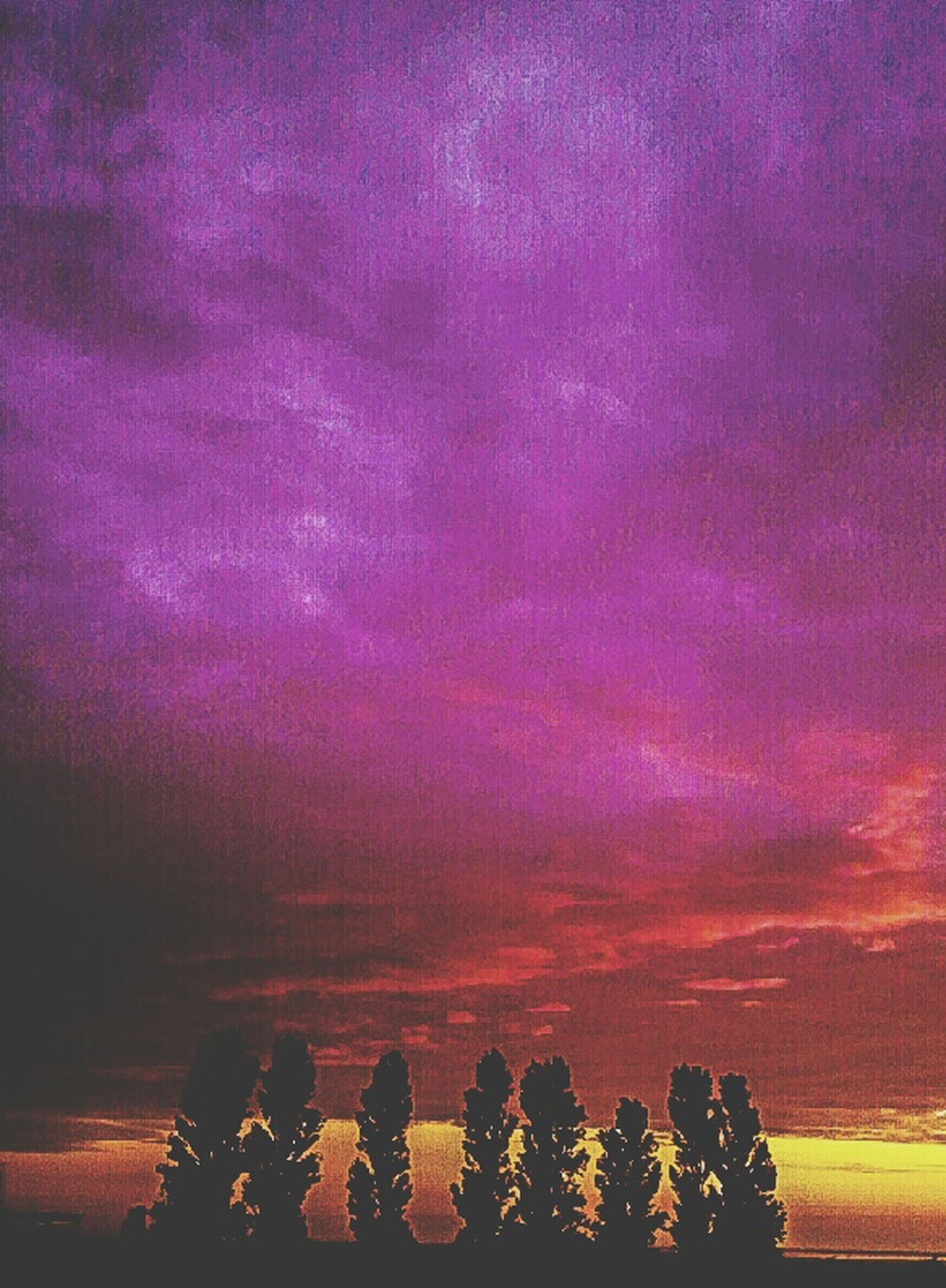 sunset, beauty in nature, dramatic sky, scenics, tranquil scene, silhouette, cloud - sky, tranquility, sky, cloud, purple, nature, idyllic, flower, majestic, growth, plant, pink, atmospheric mood, cloudy, outdoors, pink color, cloudscape, romantic sky, sea, moody sky, petal, no people, purple color, vibrant color