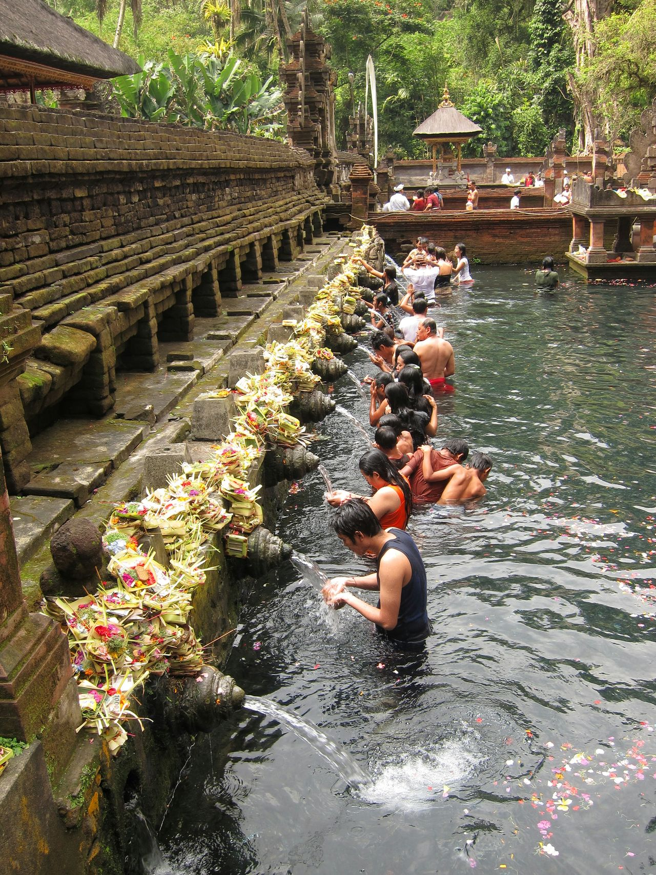 People Bathing in Holy Water Ritual Spring Spirituality Tradition Flowers Offerings Balinese Culture Religion Tirta Empul Hindu Pool Feel The Journey Flowing Water Ubud People Together Bali INDONESIA
