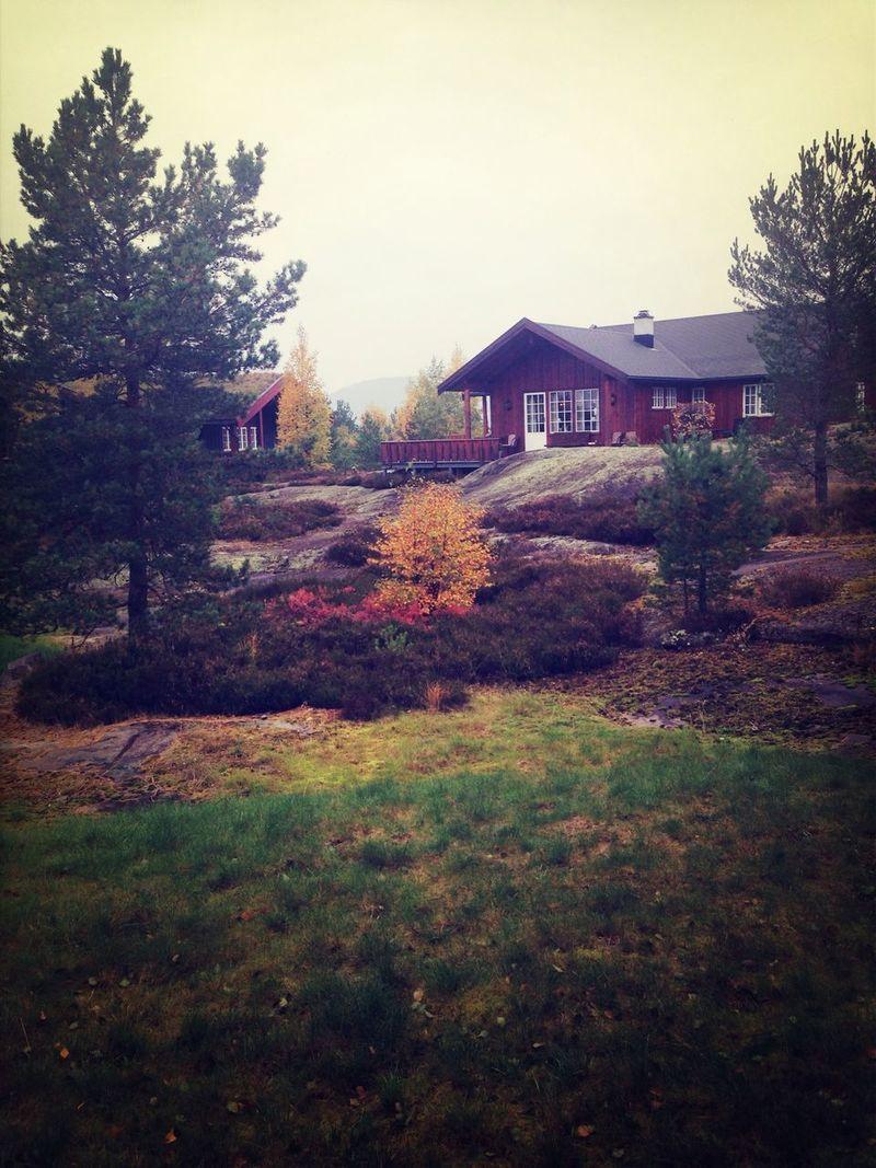 Autumn Autumn Colors At The Cabin Boyfriend