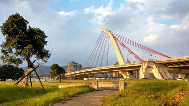 大直橋 Bridge Tree Grass Sunset Cloudy Sky Path Taipei Taiwan Iseetaiwan Nofilter HDR