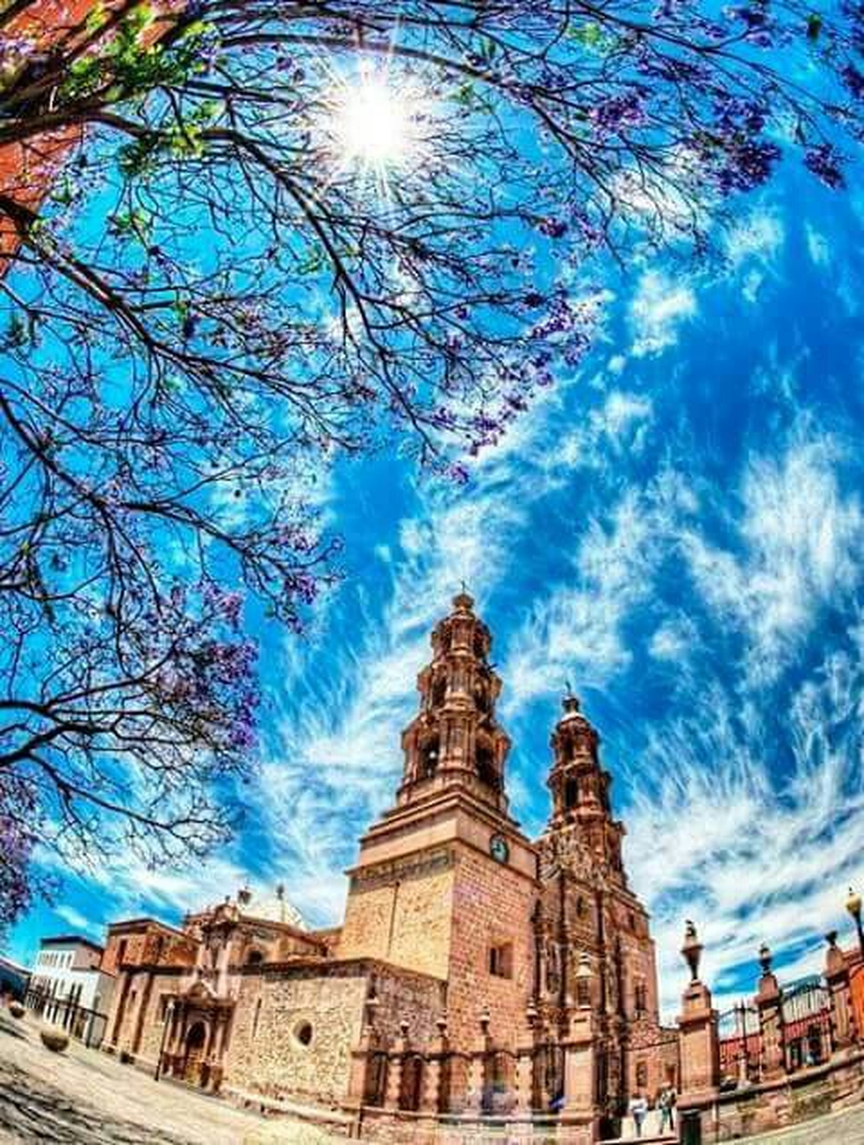 architecture, building exterior, built structure, place of worship, sky, blue, church, religion, tree, spirituality, low angle view, sunlight, cloud - sky, cathedral, history, famous place, bare tree, travel destinations