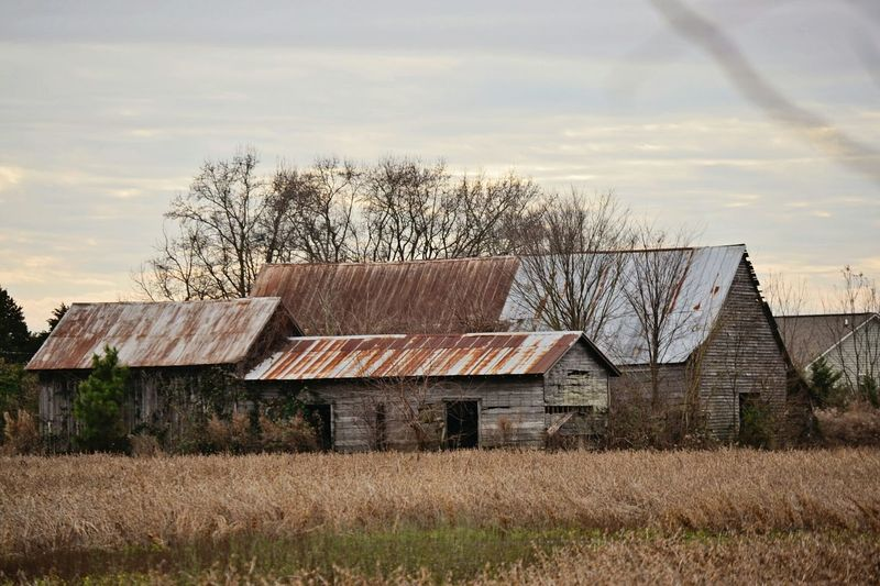 I love this old place Taking Photos Nikonphotography Around My Town This Old Barn