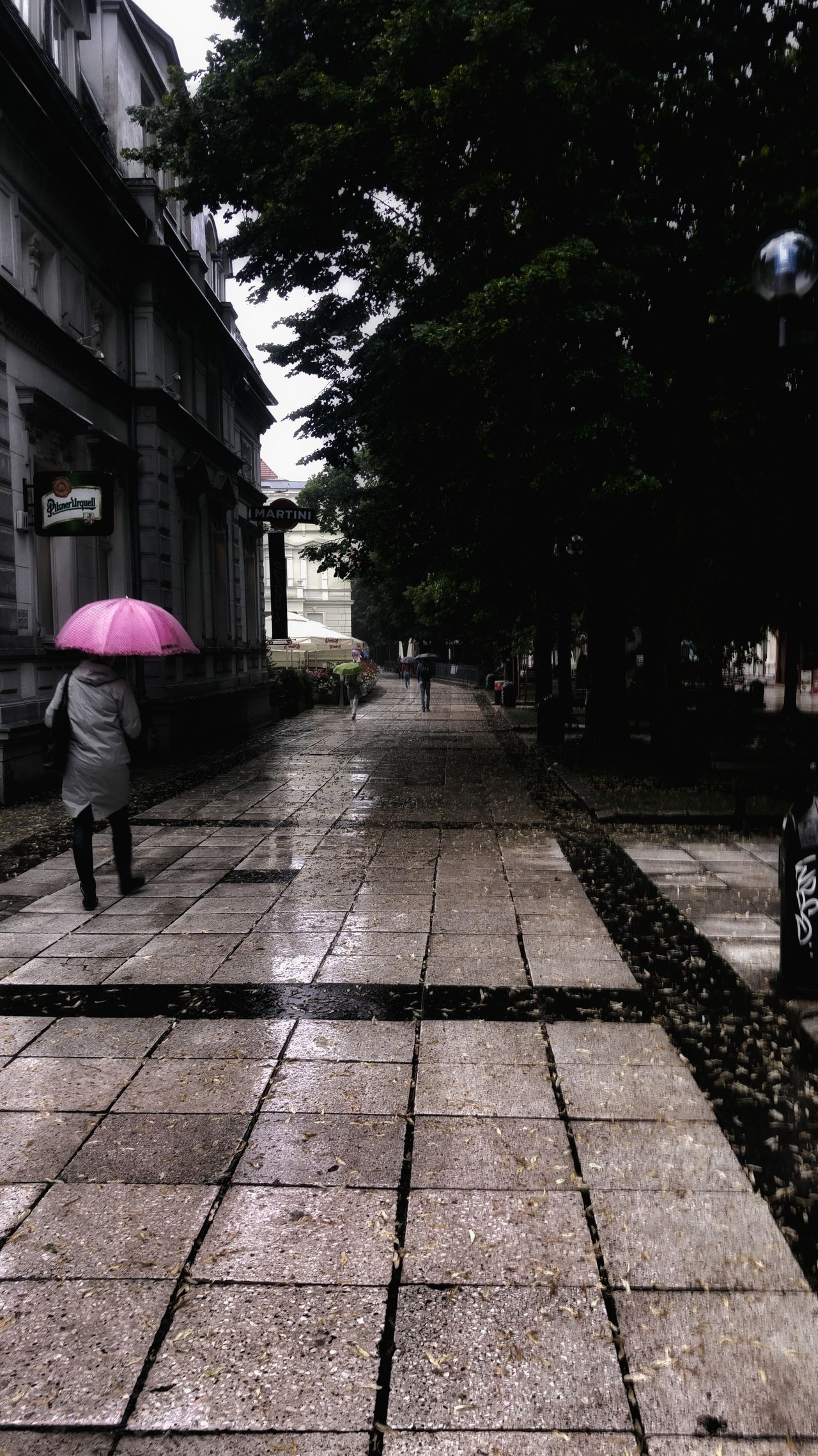 Rainy Day Deszczowy Dzień Stare Miasto Old Town Spacer Walking On The Rain Parasol Umbrella Pink Umbrella Przechodnie Pedestrians Green Tree Pavement Chodnik Wet Pavement