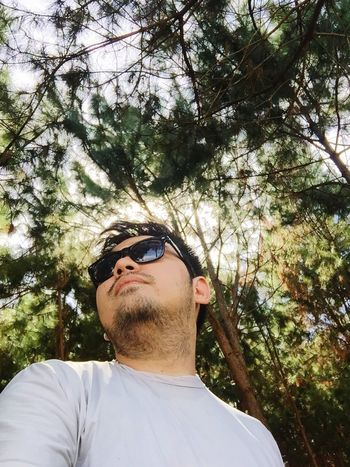 Tree Sunglasses Low Angle View Mid Adult Real People Day One Person Young Adult Branch Leisure Activity Outdoors Lifestyles Nature Portrait Close-up People