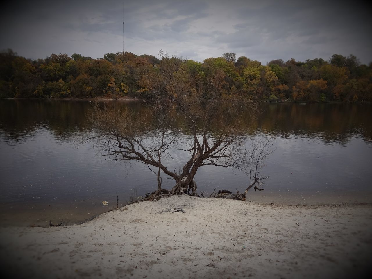 White Sands Beach, Minneapolis MN Day Fall Collection Fall Colors Fall Leaves Grass Landscape Nature No People Outdoors Reflection Reflection Lake Relaxing Sky Tabphotography Tree Trees Water Water Reflections Wetland