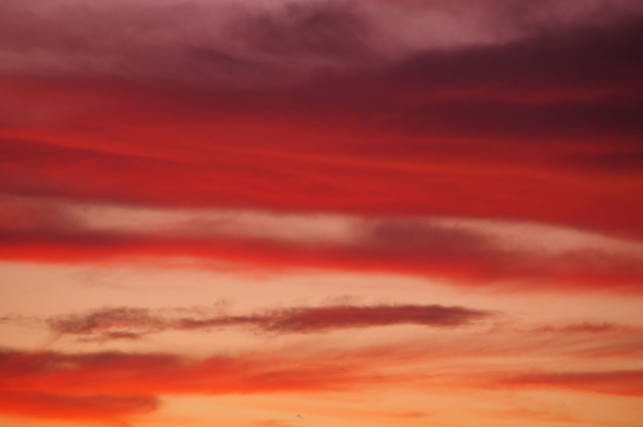 Backgrounds Beauty In Nature California Sunset Cloud - Sky Heaven Idyllic Just Nature Nature No Filter Needed. No Filter No Edit Just Photography No Filter No Edit Just Reality No Filter, No Edit, Just Photography No People Outdoors Red Silence Sky Sky Only Space Sunset Tranquil Scene Tranquility Best Sunrises And Sunsets Sunset Glow Copy Space
