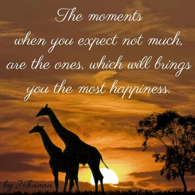 Hello World ✌ Inspirational Quote Johanna'sQuotes Thoughts & Quotes My Quotes!! Open Edit Followme Quoteoftheday Expression Hello World
