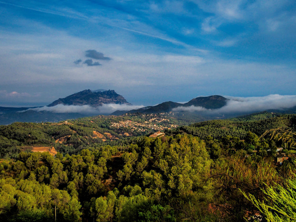 Panoramic view of Montserrat mountain from Ullastrell - Catalunya Beauty In Nature City Cloud - Sky Day Green Color Landscape Lush Foliage Mountain Mountain Range Nature No People Outdoors Plant Scenics Sky Tree