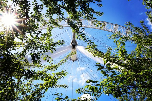 London Eye Ferris Wheel Sunnyday Summer Trees Tourist Tourist Attraction  Landmark Travel London Uk Landscape_Collection Travel Destinations Outdoors No People Sky Nature Architecture EyeEm LOST IN London