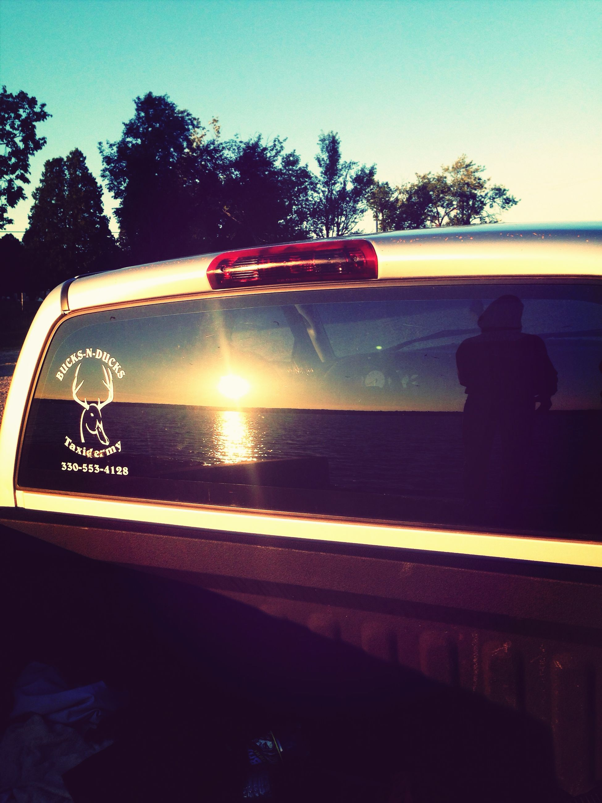 transportation, land vehicle, mode of transport, car, tree, clear sky, sunset, road, silhouette, reflection, vehicle interior, sky, side-view mirror, travel, street, sunlight, on the move, glass - material, sun, windshield