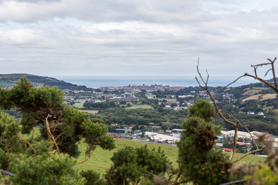 Aberystwyth in the distance... Aberystwyth Architecture Beauty In Nature British Coastline Cloud - Sky Coastline High Angle View Landscape Landscape_Collection Nature Near And Far Near And Far Trees Scenics Sky Through Trees Town Travel Travel Destinations Travel Photography Tree Wales Welsh Coast Welsh Coastline Welsh Landscape