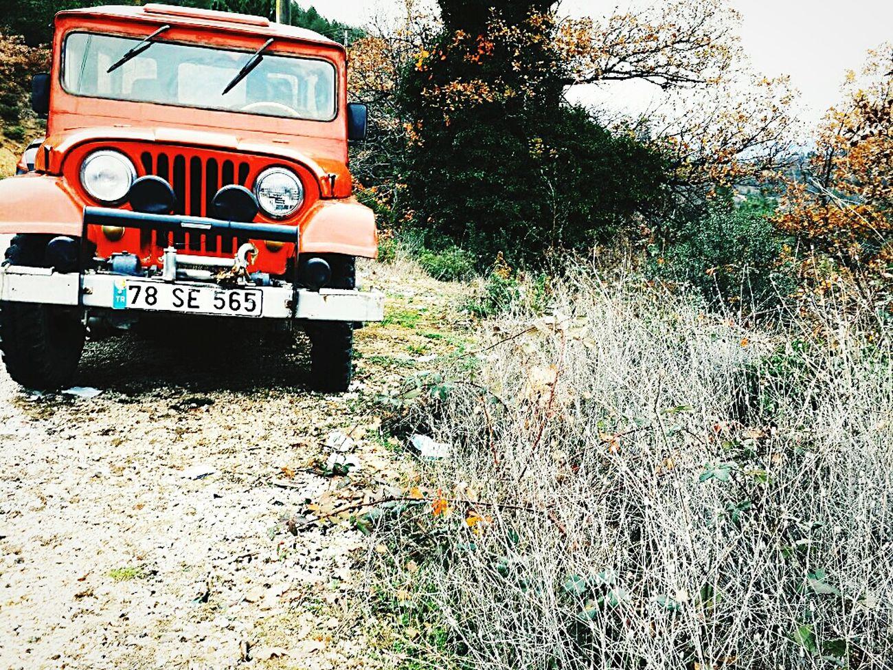 Dodge Vintage Cars Red