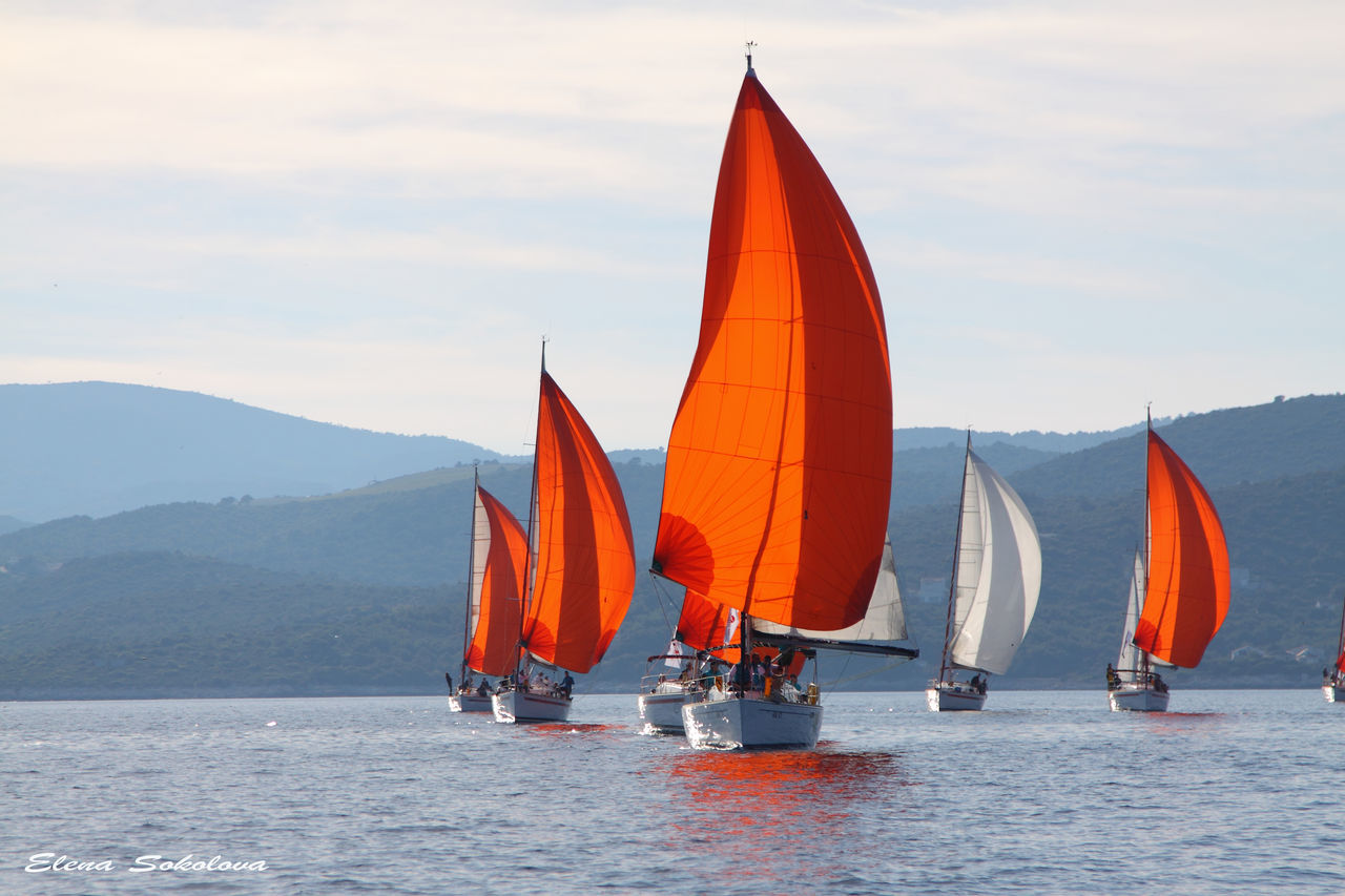 Adventure Aquatic Sport Competition Competitive Sport Day Hot Air Balloon Nautical Vessel No People Outdoor Pursuit Outdoors Regatta Sailboat Sailing Sport Sports Race Sports Team Sunset Travel Vacations Water Yachting