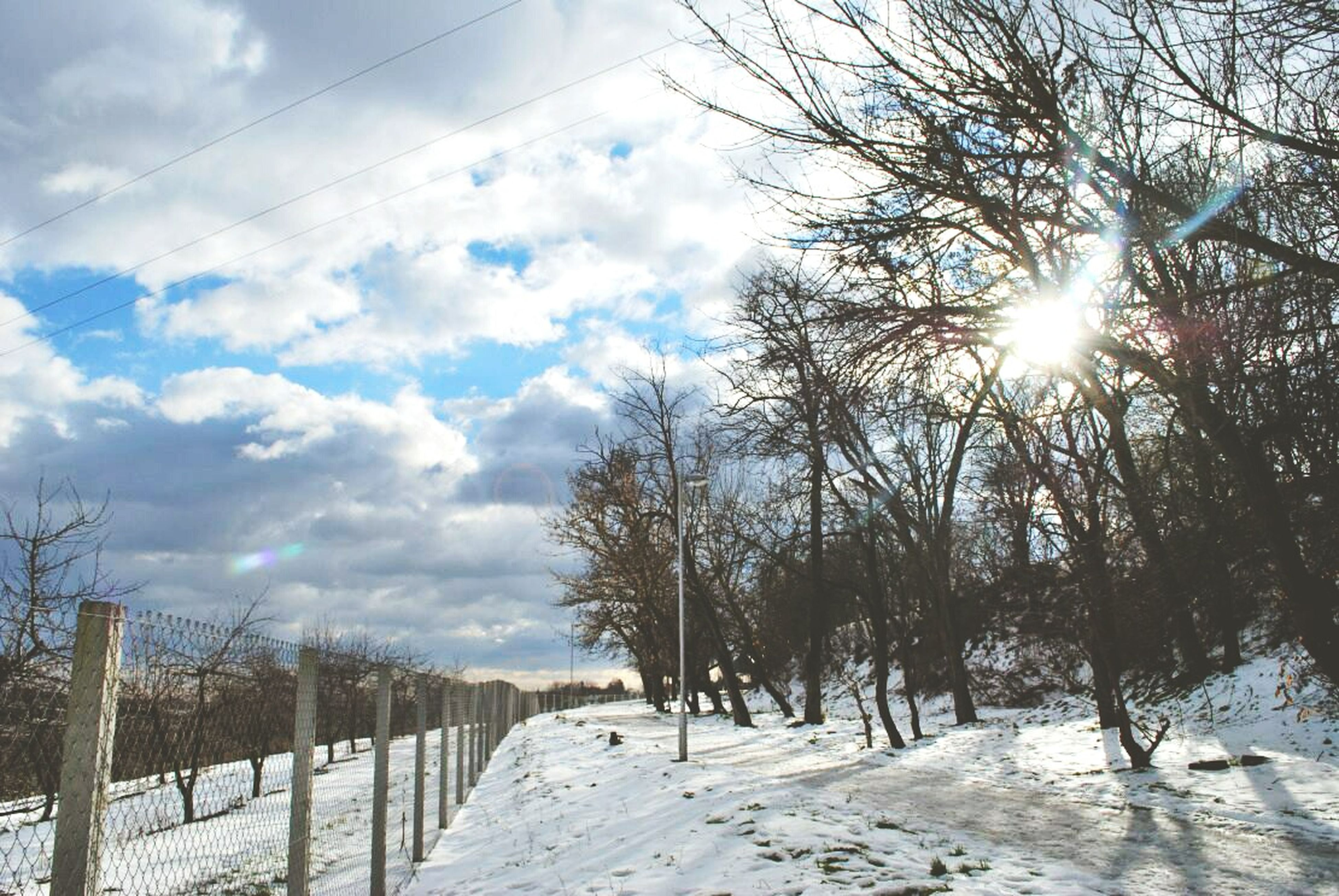 sky, tree, bare tree, sun, cloud - sky, sunlight, tranquility, snow, nature, winter, branch, cold temperature, sunbeam, tranquil scene, beauty in nature, railing, scenics, water, cloud, weather
