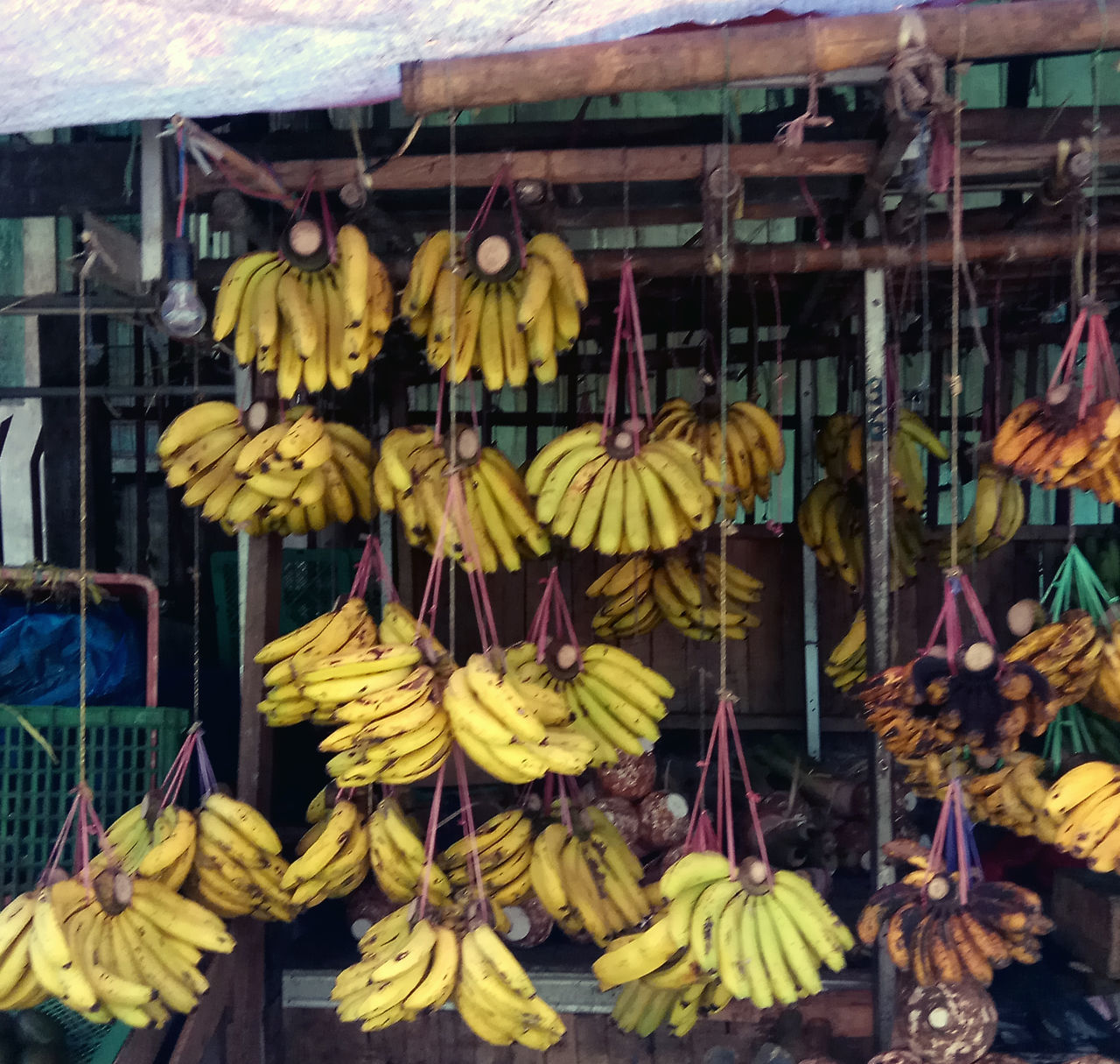 Bananas in traditional markets Banana Banana Tree Bunch Close-up Day Food Food And Drink For Sale Freshness Fruit Hanging Healthy Eating Indoors  Large Group Of Objects Low Angle View Market No People Retail  Streetphotography Variation Yellow