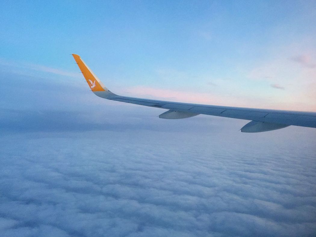 A look at the wing of Pegasus Airlines plane and sunset Aerial View Air Vehicle Aircraft Wing Airlines Airplane Airplane Wing Beauty In Nature Cloud - Sky Cloudscape Flying Journey Mode Of Transport Pegasus Airlines Sky Sky And Clouds Sunset Transportation Travel Wing Wings