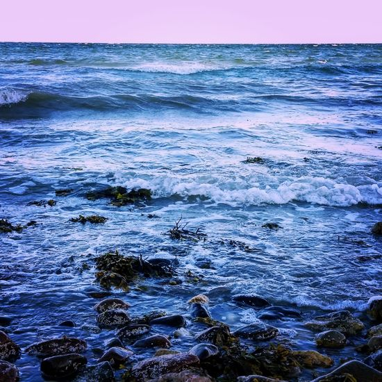 Sea Sea And Sky Seaside Seascape Baltic Sea Baltic Baltic Countries Baltic Coast Balticsea Denmark Denmark Love ❤️ Water Waves Waves And Rocks Wave Blue Purple Sky Purple Eveing Nature Showcase July