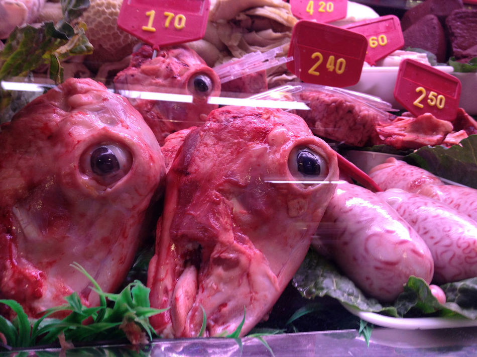 BLOODY Butterfly Close-up Day Eyes Food Food And Drink For Sale Freshness Ghoulish Goats Head Healthy Eating Mar Market Market Stall No People Outdoors Price Tag Retail  Sheeps Head Peninsula