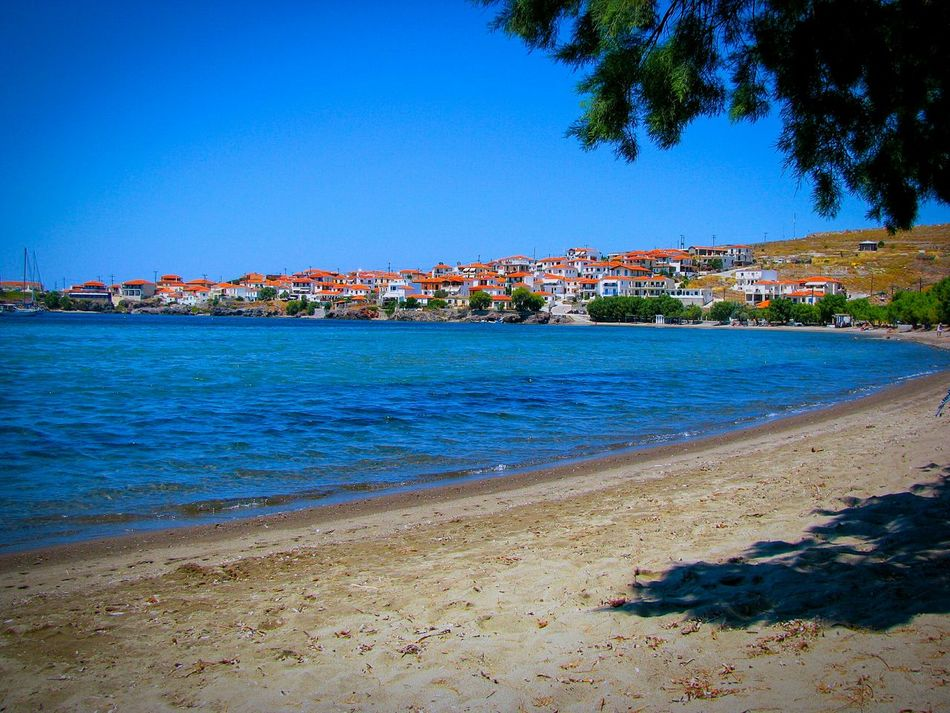 Village Seaside Seaside Village Village View Seascape Beach Beach Photography Life Is A Beach Tree Shadow Light And Shadow Houses Red Roofs Shades Of Blue Blue Sea Sea Houses And Sea Lesvos Island Greek Islands Landscapes Landscape Landscape_Collection The Great Outdoors - 2016 EyeEm Awards