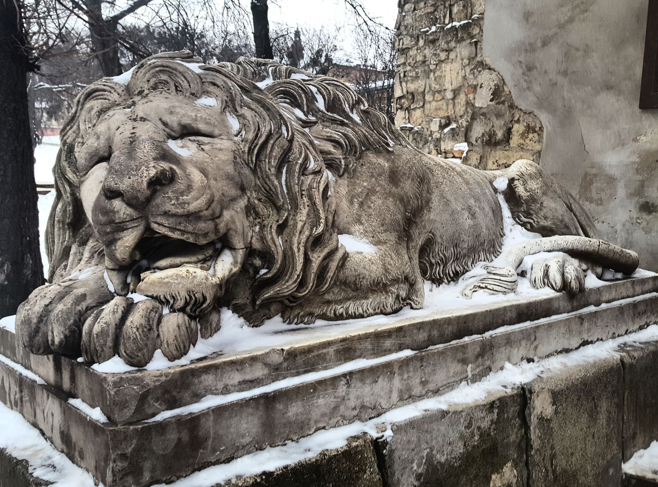 Lviv, Ukraine Lviv Winter Lions Of Lviv Lionsculpture Snow ❄ Beauty In Ordinary Things Sleeping Lion Lvivforyou Lvivdetails Lviv💝