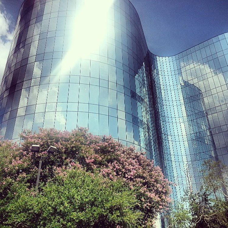 Sexy building :D Mashallah Beautiful Day Primerica building training bored break lunch favorite hobby trees glass sun sky awesome hot day pro shot follow me