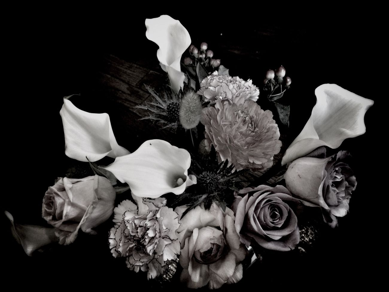 Flowers Blackandwhite Photography B/w Daily Black And White