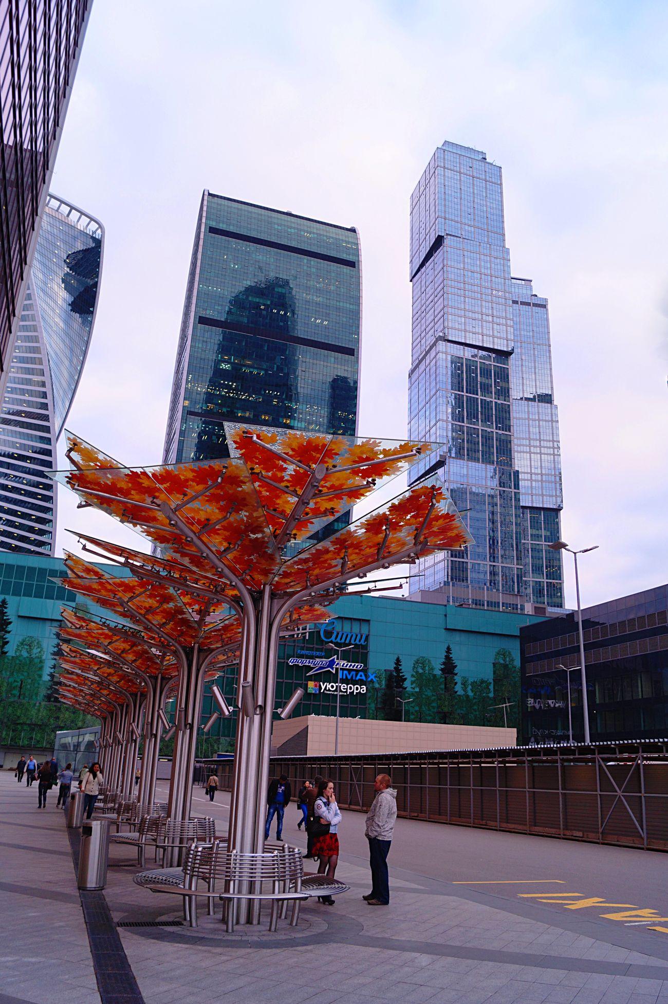 Moscow City Autumn Autumntime Moscowcity
