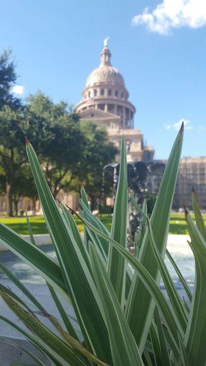Texascapitolbuilding Nature Architecture Texas Austin Fine Art Photography