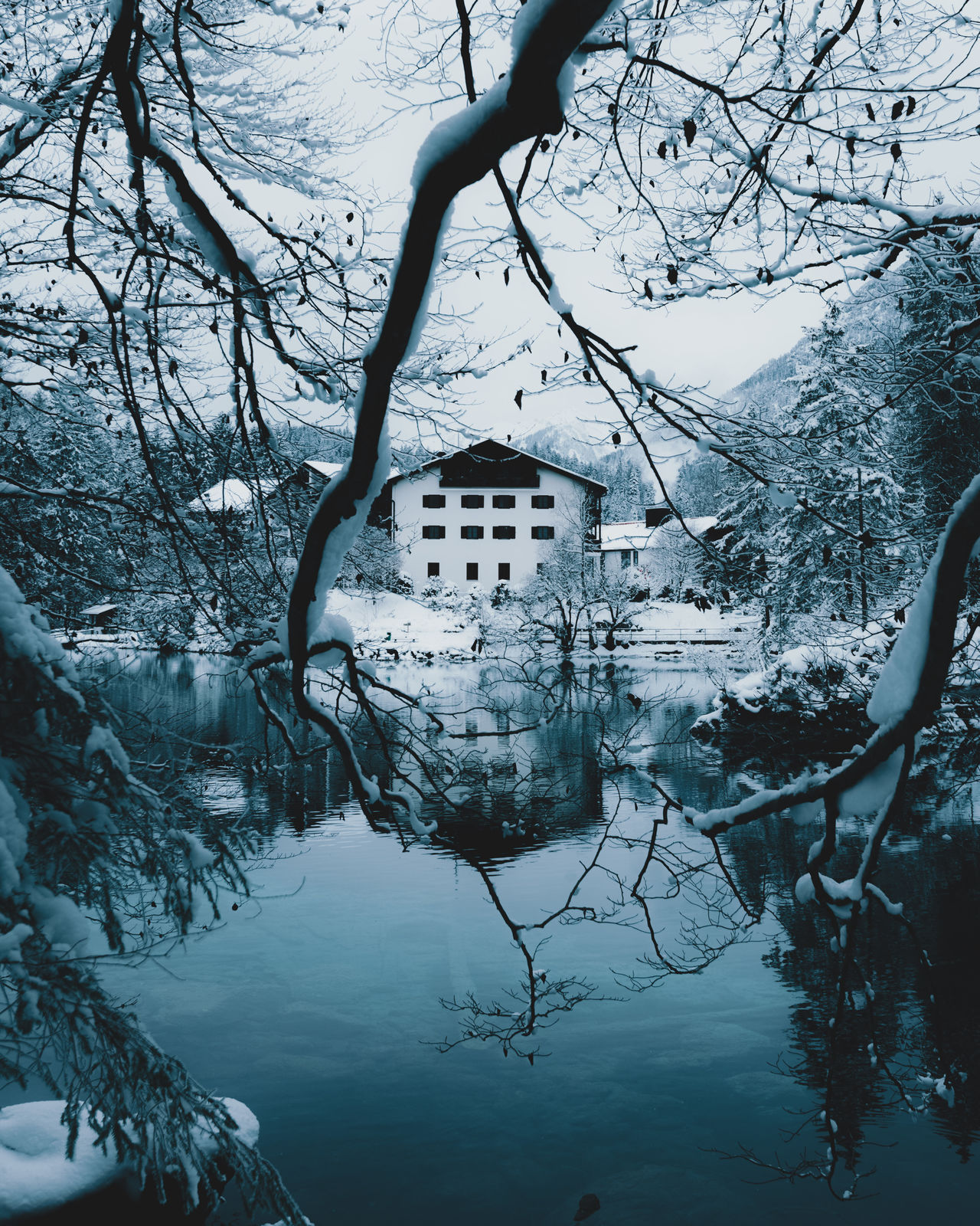 Reflection of a house at a winter mountain lake Architecture Bare Tree Beauty In Nature Branch Cold Temperature Day EyeEm Best Shots House Landscape_Collection Nature No People Outdoors Reflection Sky Snow TheWeekOnEyeEM Tranquility Tree Winter