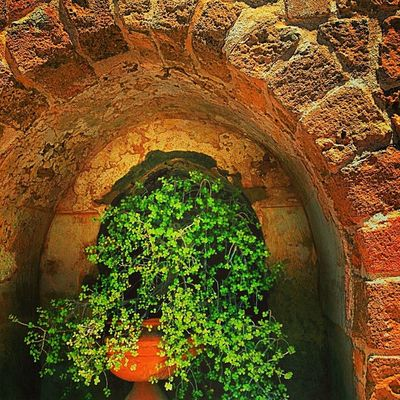An Alcove to the Past Photopromotion Rainbow_wall YouMustSee Amselcom Mobileartistry Icolorama Instauno Igsg Photoblipoint Ig_artgallery Nothingisordinary Gang_gamily Ace_ Deadlydivas Icatching Ig_artistry